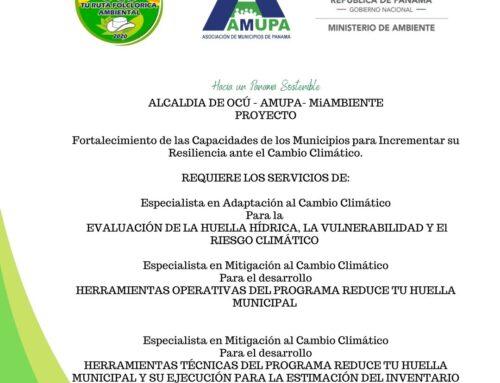 Proyecto Ocú